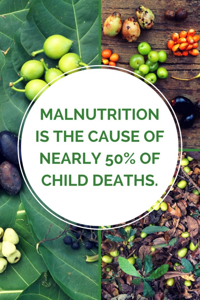 malnutrition stat